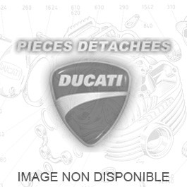 Kit silencieux racing carbone 1198 Sorties ovales